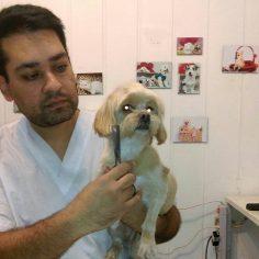 یک آرایشگر خوب و با تجربه میتونه با حیوانات چطور رفتار کنه